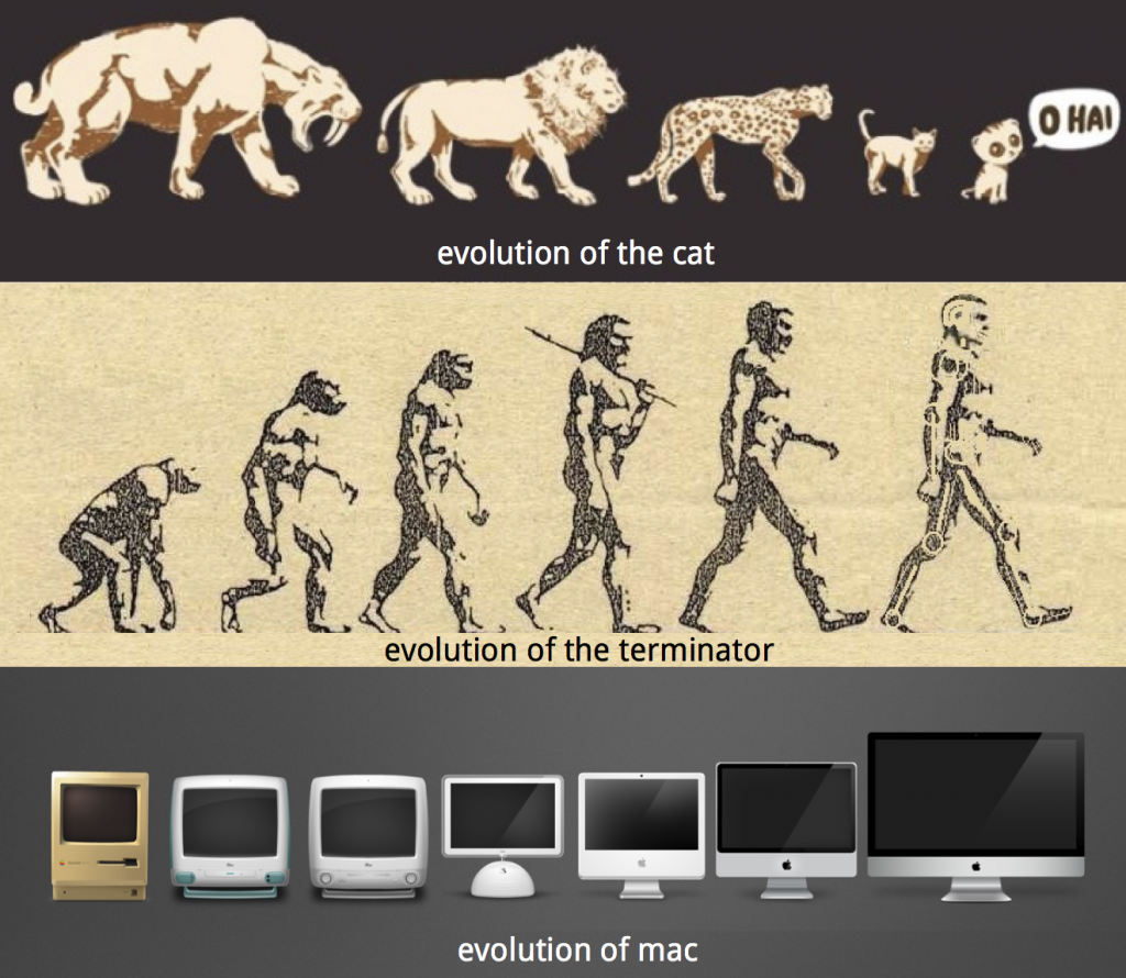 evolution analogies